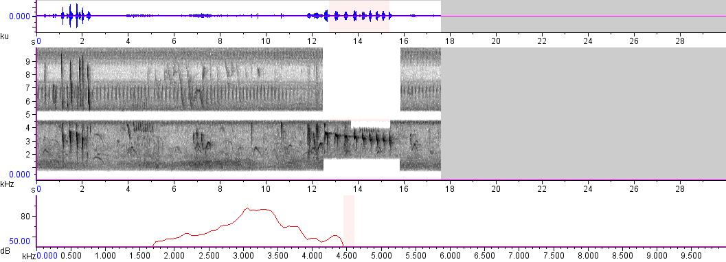 Sonogram of recording #AV 59