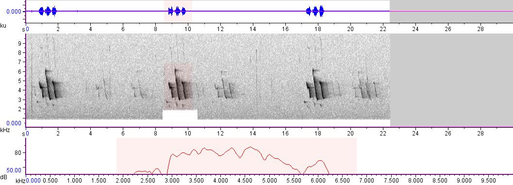 Sonogram of recording #AV 102