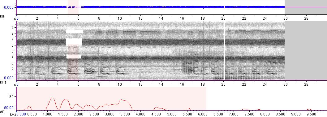 Sonogram of recording #AV 1047
