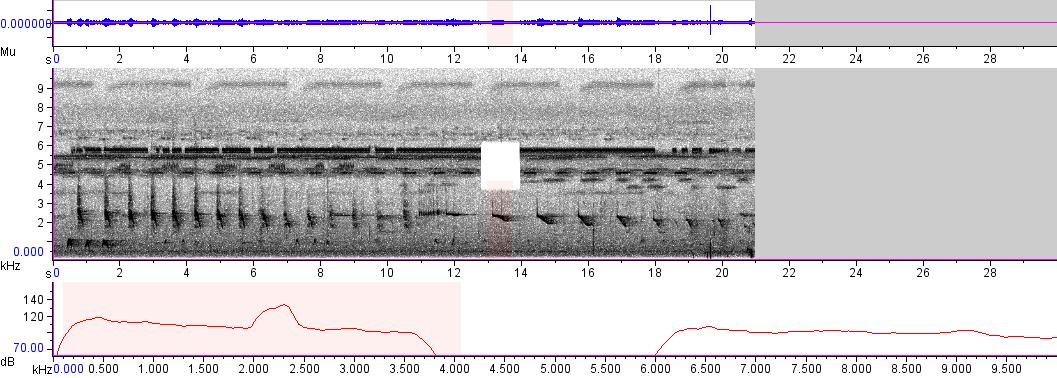 Sonogram of recording #AV 1732
