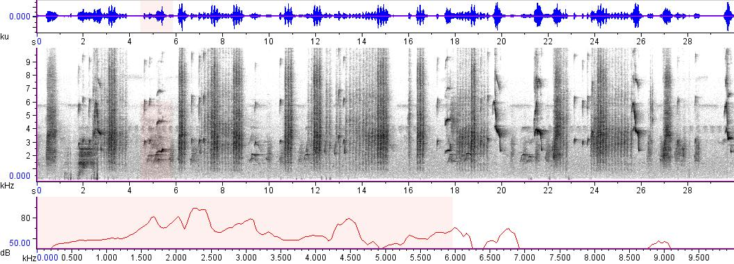 Sonogram of recording #AV 1766