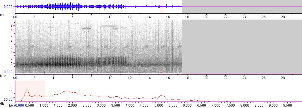 Sonogram of recording #AV 1803