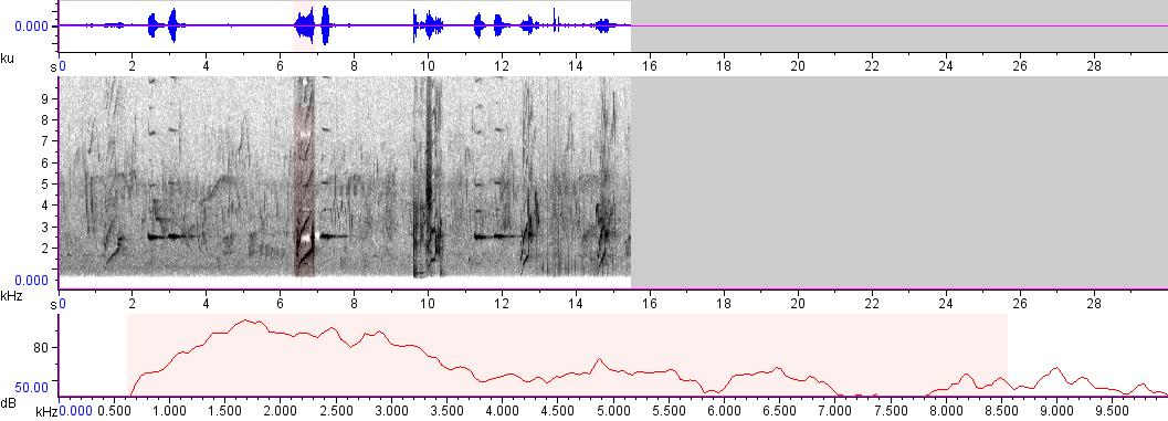 Sonogram of recording #AV 231