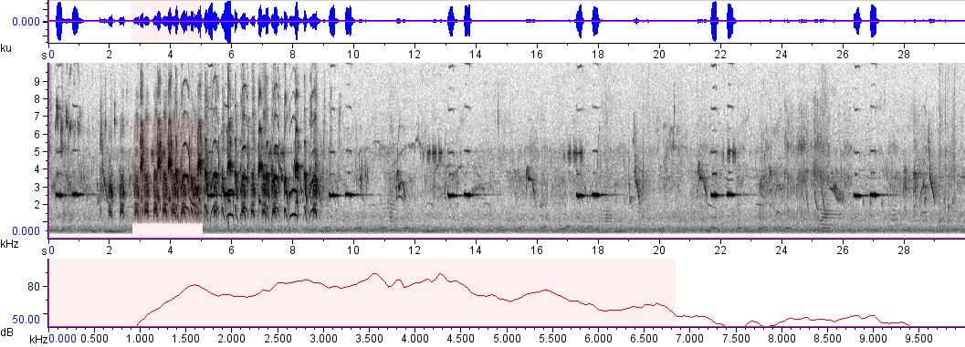Sonogram of recording #AV 232