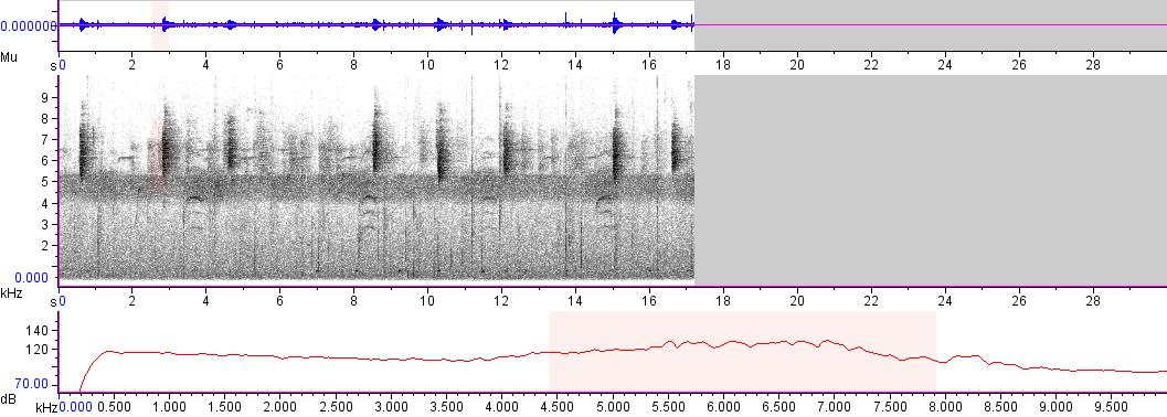 Sonogram of recording #AV 2283