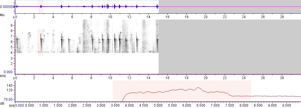 Sonogram of recording #AV 2534