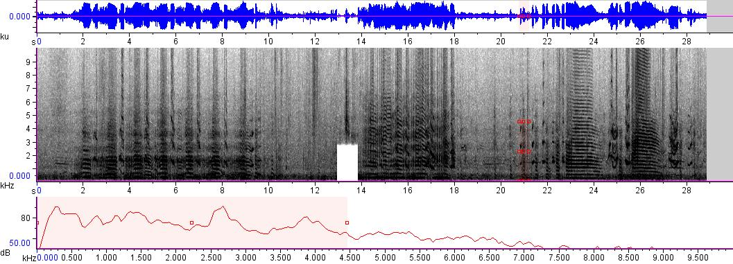 Sonogram of recording #AV 305