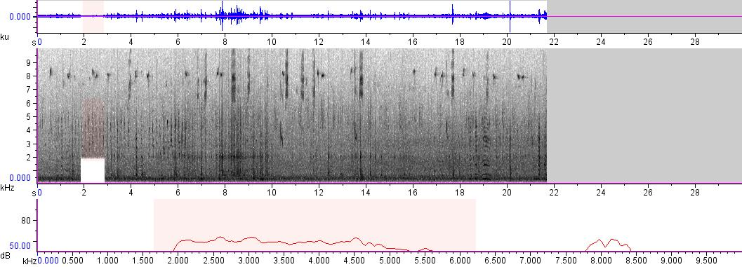 Sonogram of recording #AV 328
