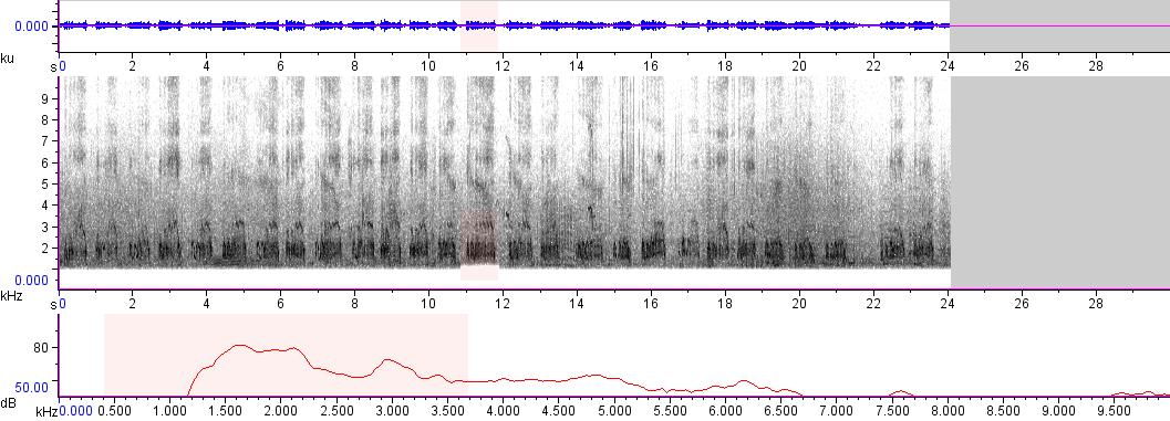 Sonogram of recording #AV 379