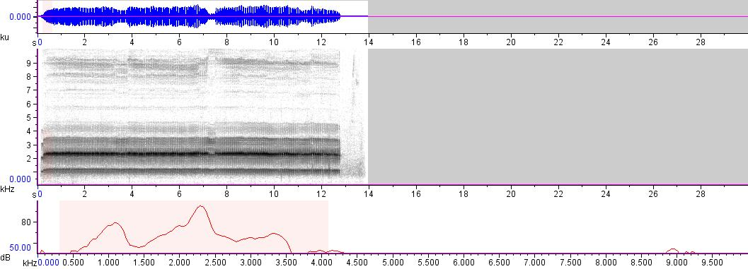 Sonogram of recording #AV 3197