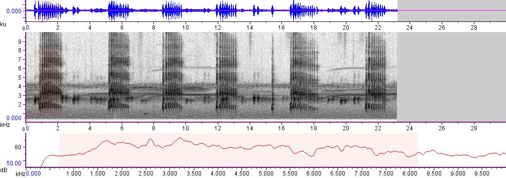 Sonogram of recording #AV 3257