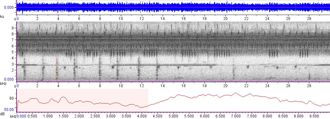 Sonogram of recording #AV 3471