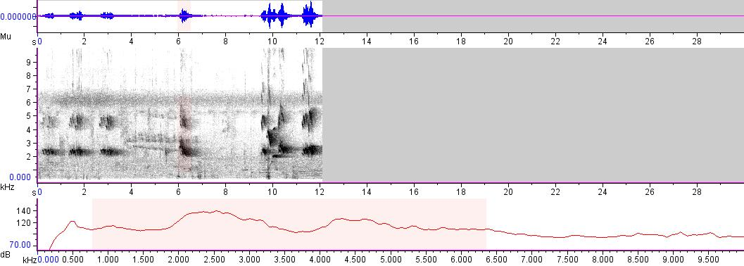 Sonogram of recording #AV 3608