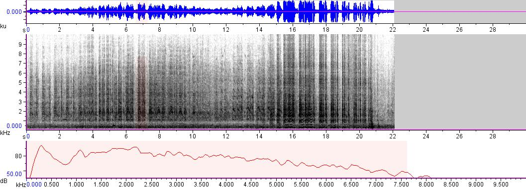 Sonogram of recording #AV 416