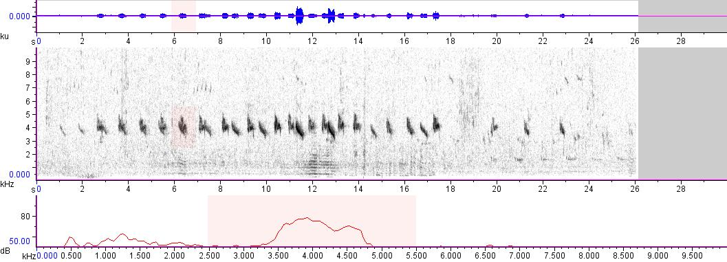 Sonogram of recording #AV 4772