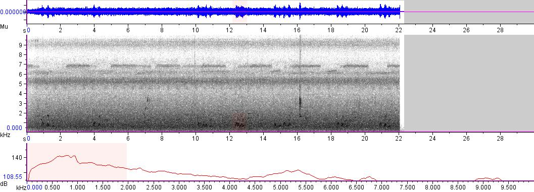 Sonogram of recording #AV 5348