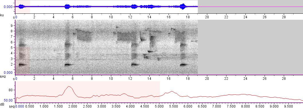 Sonogram of recording #AV 5659