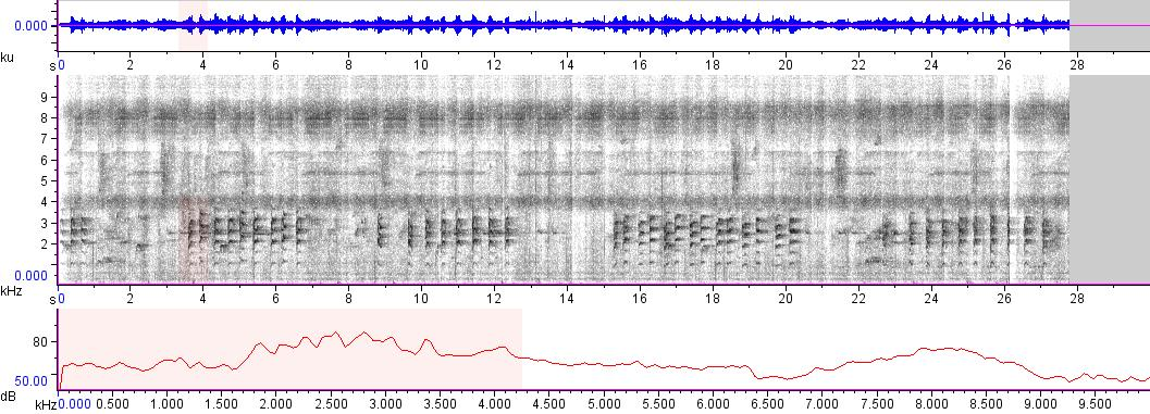 Sonogram of recording #AV 5765