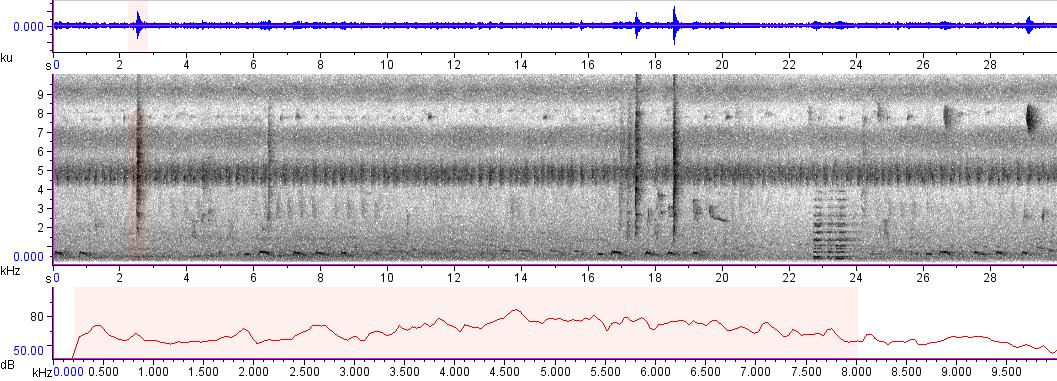 Sonogram of recording #AV 5776