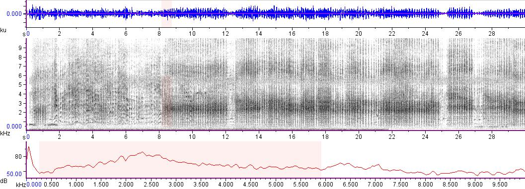 Sonogram of recording #AV 5824
