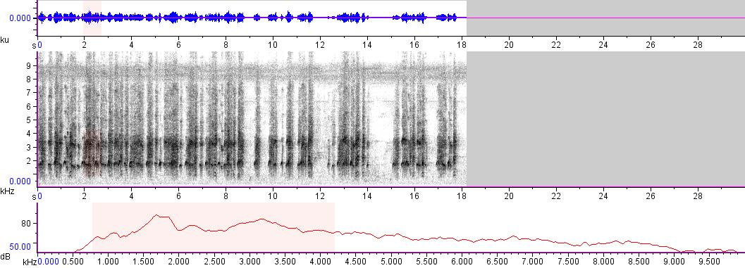 Sonogram of recording #AV 5856