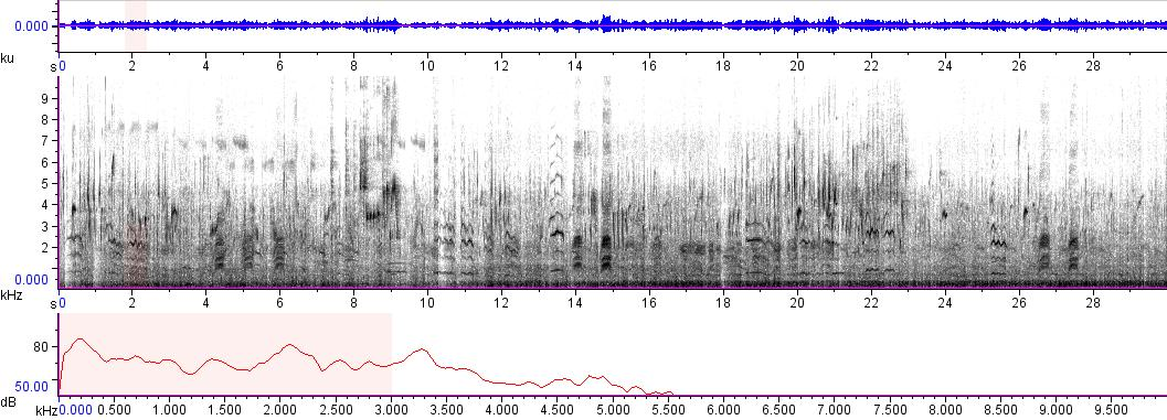 Sonogram of recording #AV 5876