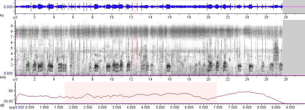 Sonogram of recording #AV 5950