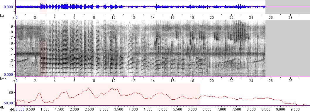 Sonogram of recording #AV 5973