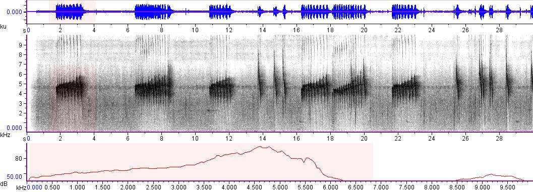 Sonogram of recording #AV 6070