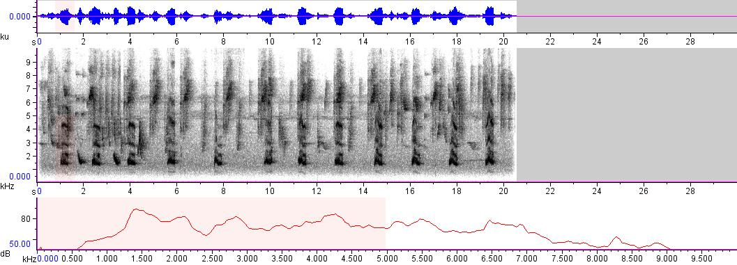 Sonogram of recording #AV 6089