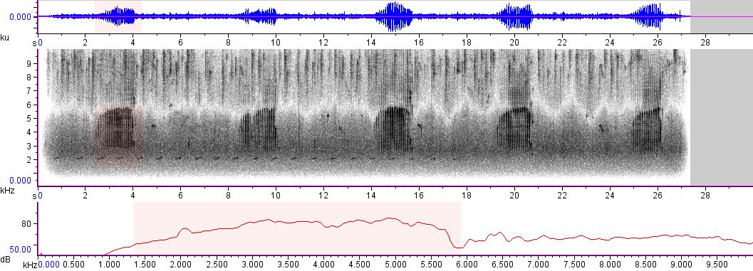 Sonogram of recording #AV 6097