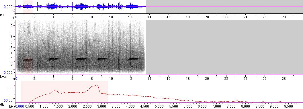 Sonogram of recording #AV 6110
