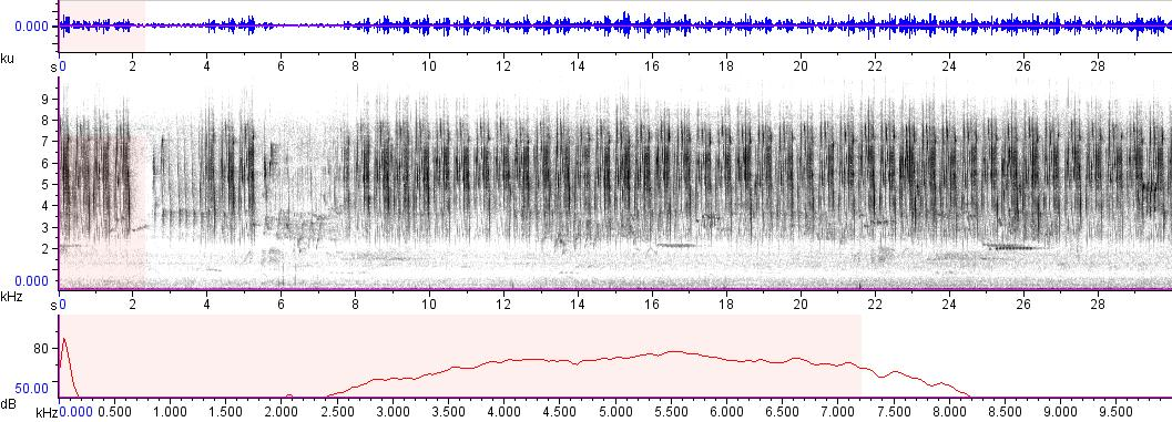 Sonogram of recording #AV 6245