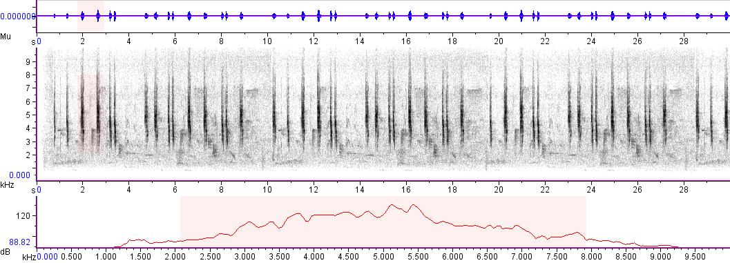 Sonogram of recording #AV 6694