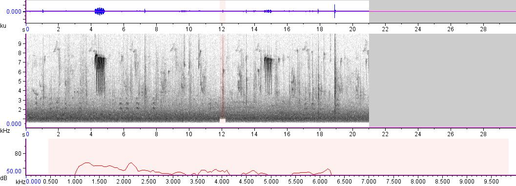 Sonogram of recording #AV 759
