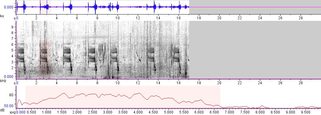 Sonogram of recording #AV 7174