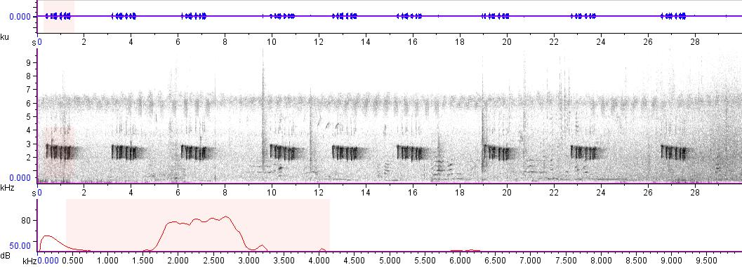 Sonogram of recording #AV 7238