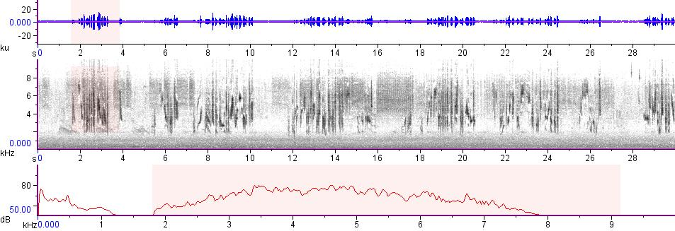 Sonogram of recording #AV 7535