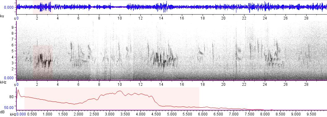 Sonogram of recording #AV 7634
