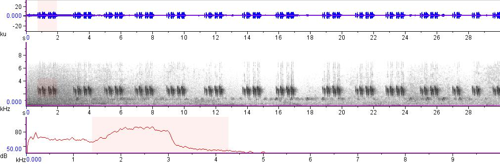 Sonogram of recording #AV 7810