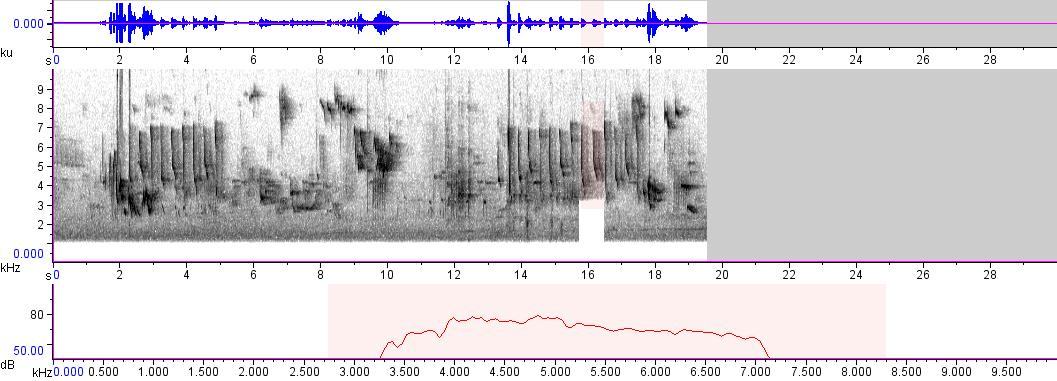 Sonogram of recording #AV 845