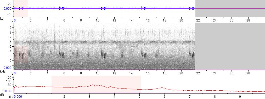 Sonogram of recording #AV 8214