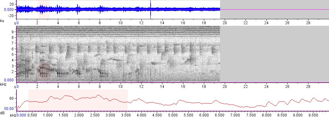 Sonogram of recording #AV 8224