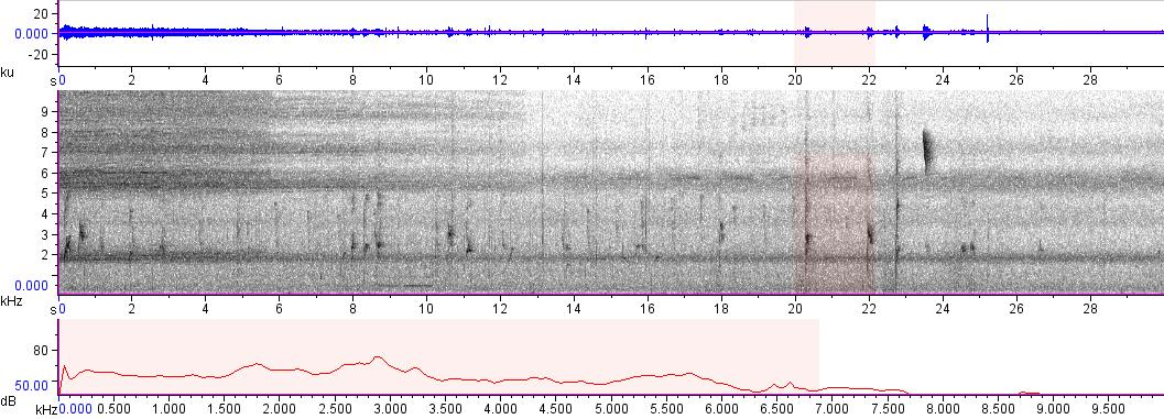 Sonogram of recording #AV 8279