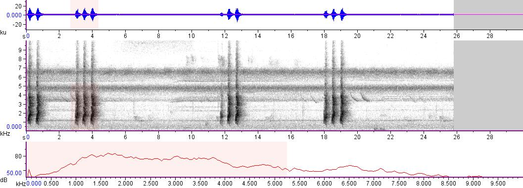 Sonogram of recording #AV 8287