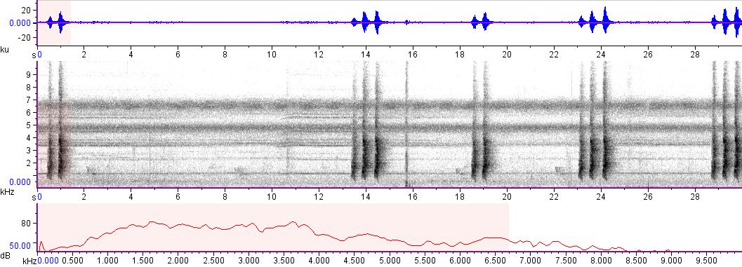 Sonogram of recording #AV 8288