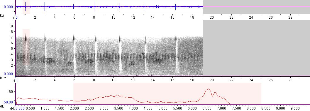 Sonogram of recording #AV 8314
