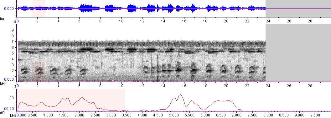 Sonogram of recording #AV 8327