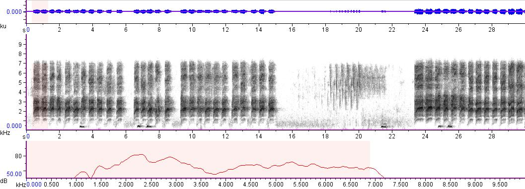 Sonogram of recording #AV 8377