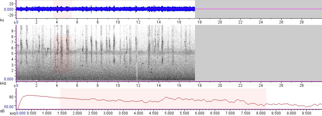 Sonogram of recording #AV 8469